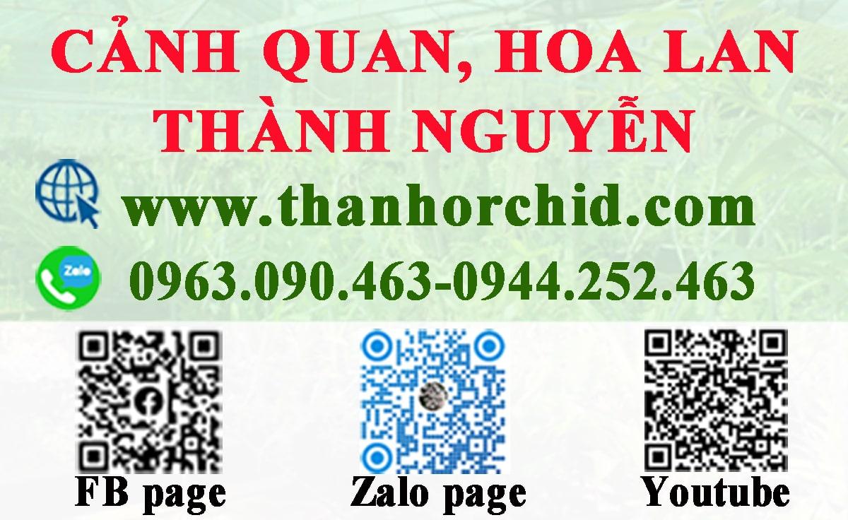 liên hệ vườn lan Thành Nguyễn